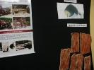 EXPOSIÇÃO: REVIVENDO O VALE DO CARIRI - Uma viagem ao mundo dos fósseis na terra dos cariris-8